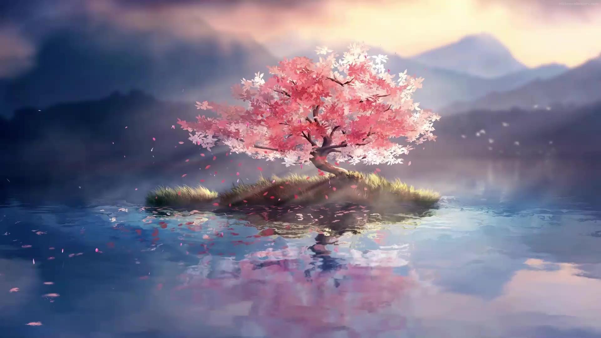 Lone Cherry Blossom Tree Live Wallpaper - WallpaperWaifu